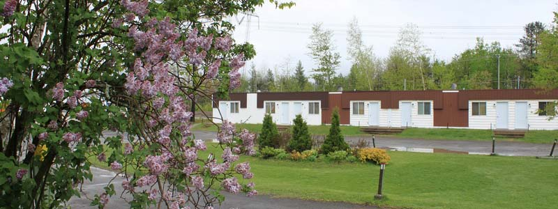 lilac in front of motel